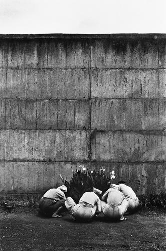 壁の中 ©奈良原一高 2019